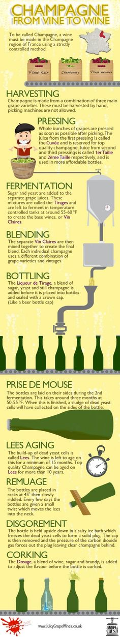 Champagne – From Vine To Wine. #Wine #Champagne Source: www.designinfographics.co