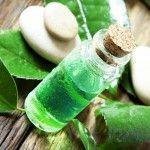 Olio di tea tree  : usi e virtù