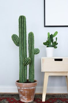 Cute Cactus Decor Last Friday was the first day of this Cactus DIY journey. Where do I even begin& This cute cactus definitely took me for a spin. Jumping into this DIY I knew it would be a hard one since I've nev Decoration Cactus, Decoration Plante, Fake Plants, Indoor Plants, Indoor Garden, Grand Cactus, Cactus House Plants, Types Of Cactus Plants, Cacti Garden