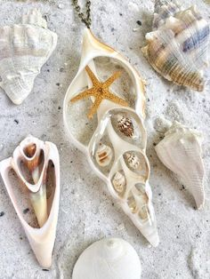 """Pendant Details:-Made of a real sea shell slice and contains a real sea shells-Resin is used to fill the shell to keep the other shells securely sealed in-Pendant is approximately 4"""" x 1.5""""-24"""" necklace chain is included*Because of its hand crafted nature pendants may have slight imperfections*"""