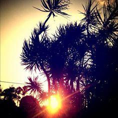 Good morning, sunshine! Instagram: @wearehandsome