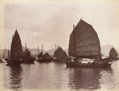 The Chinese Female Pirate Who Commanded 80,000 Outlaws   Atlas Obscura