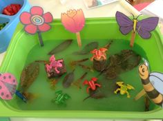 Five little speckle frog. 5 Little Speckled Frogs, Year 1 Maths, Five Little, Classroom, Activities, Class Room