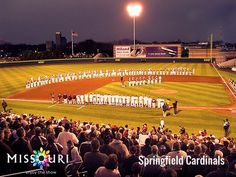 If you're in Springfield this season you have to catch a Springfield Cardinals (the Double-A affiliate of the St. Louis Cardinals) game. They are so much fun and there is a chance you might see some future STL Cards play.