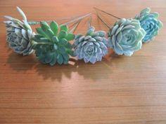 DIY succulent bouquets plus succulent corsages, center pieces, or whatever!!