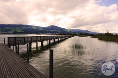 """The"""" Holzbrücke Rapperswil-Hurden"""" is  the longest wooden bridge in Switzerland. It is located next to the so-called Seedamm on upper Lake Zürich (Obersee), and connects Rapperswil, canton of St. Gallen, and Hurden, canton of Schwyz. #swissspots"""