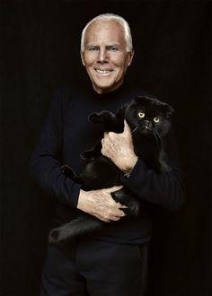 almost famous cats : Giorgio Armani.