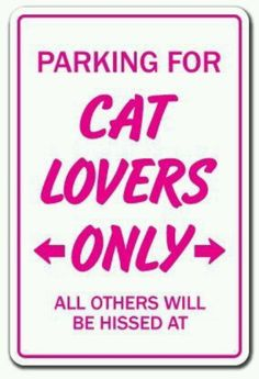 CAT LOVERS Sign animals kitten love pets kitty gift feline collector cats cat