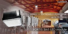 FORTIS SMALL BUT POWERFUL.jpg
