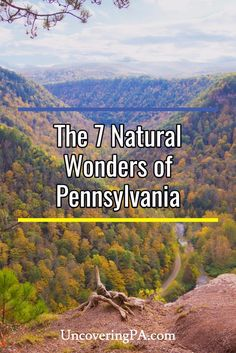 Exploring the 7 Natural Wonders of Pennsylvania Pennsylvania is home to many beautiful outdoor destinations. However, some are exceptionally noteworthy. Here are the 7 Natural Wonders of Pennsylvania. Places To Travel, Places To See, Travel Destinations, Camping In Pennsylvania, Pennsylvania History, 7 Natural Wonders, Travel Pictures Poses, Surfing Pictures, Into The West