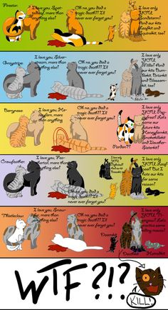 This is my favorite warrior cats meme! Warrior Cats Quotes, Warrior Cats Comics, Warrior Cats Funny, Warrior Cats Fan Art, Warrior Cats Series, Warrior Cats Books, Warrior Cat Drawings, Cat Comics, Cat Quotes