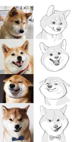dog drawing Super Dogs Drawing Cartoon Animation I - dog Funny Drawings, Animal Drawings, Drawing Animals, Drawing Art, Drawing Tips, Drawing Ideas, Drawing Sketches, Cartoon Dog Drawing, Dog Drawing Tutorial
