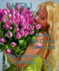 Good Morning, Tuesday, Buen Dia, Bonjour, Good Morning Wishes