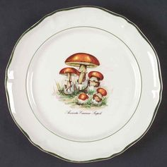 Sdq1 Salad Plate by St Amand | Replacements, Ltd. Pattern Code, Mushroom Art, China Dinnerware, Salad Plates, How To Take Photos, Decorative Plates, Stuffed Mushrooms, Tableware, Home Decor