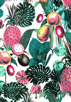 Tess Jacobson #tropical #flora #pattern