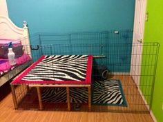 Idea for bunny cage - BinkyBunny.com - House Rabbit Information Forum - BinkyBunny.com - BINKYBUNNY FORUMS - HABITATS AND TOYS