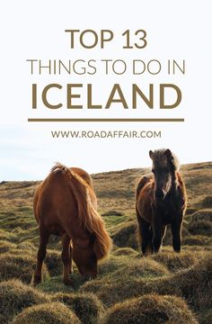 Traveling to Iceland soon? Here are some of the best things to do in Iceland. - - Traveling to Iceland soon? Here are some of the best things to do in Iceland. Traveling to Iceland soon? Here are some of the best things to do in Iceland. Iceland Travel Tips, Europe Travel Tips, European Travel, Travel Guides, Places To Travel, Places To See, Travel Destinations, Iceland Budget, Budget Travel