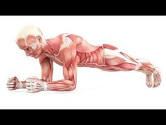 Das passiert mit deinem Körper, wenn du täglich Planks machst! - YouTube