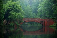 """Bridge at biltmore estate...also in last of the Mohicans ~ """"Sola, sola, wo ha, ho, sola!"""" --Shakespeare"""