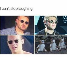 Image about niall horan in One Direction by Directioner Af One Direction Jokes, One Direction Pictures, I Love One Direction, Harry Styles Memes, Harry Styles Photos, Hippie Grunge, Harry 1d, Family Show, 1d And 5sos