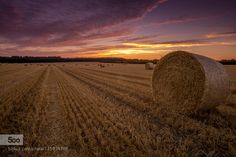 Sunset field by heffi38. Please Like http://fb.me/go4photos and Follow @go4fotos Thank You. :-)