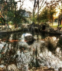 #jardimpublico #evora #lake