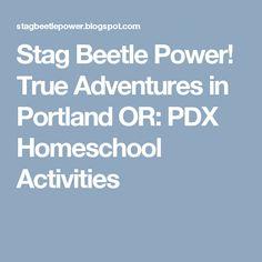 Stag Beetle Power! True Adventures in Portland OR: PDX Homeschool Activities