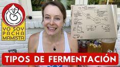 Tipos de FERMENTACIÓN (de verduras y otros alimentos) Kombucha, Fermented Foods, Healthy Tips, 1, Youtube, Instagram, Plant Based, Ideas, Vinegar