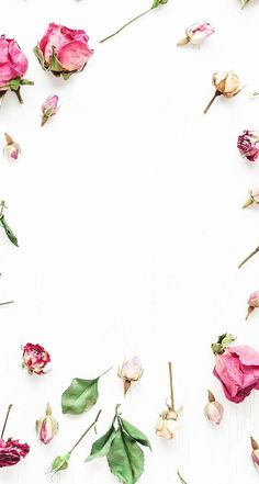 White pink scattered florals roses frame wallpaper background phone iPhone lock screen Source by csacikz Framed Wallpaper, Flower Wallpaper, Screen Wallpaper, Flower Backgrounds, Wallpaper Backgrounds, Iphone Backgrounds, Fond Design, Iphone Wallpaper Pinterest, Iphone Hintegründe