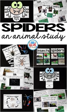 Engage your class in an exciting hands-on experience learning all about spiders! This Spiders: An Animal Study is perfect for science in Preschool, Pre-K, Kindergarten, First Grade, and Second Grade classrooms and packed full of inviting science activities.  Students will learn about the difference between spiders and insects, parts of a spider, a spider's life cycle, and many more fun facts. When students are done they can complete a spider research project. This pack is great for…