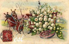 1er mai carte postale ancienne de 1907