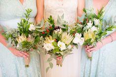 Proteas & Succulents