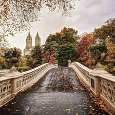 Bow Bridge, Central Park by godsavethegold #nyc One Day!!!!