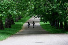 Green Park | Flickr - Photo Sharing!