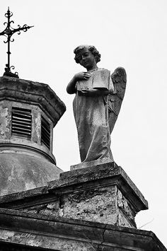 angel in Recoleta Cemetery, Buenos Aires, Argentina