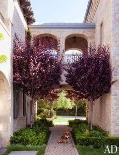 dam images celebrity homes 2013 gisele bundchen green tips eco tips 11 gisele bundchen home exterior