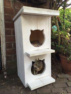 Superleuk tuinhuis voor de katten van steigerhout, sloophout! Gemaakt door Atelier Klinkhamer in Maarssenbroek,alle maten, etages mogelijk!   Kattenschuilplaats, cats, house, tuin!