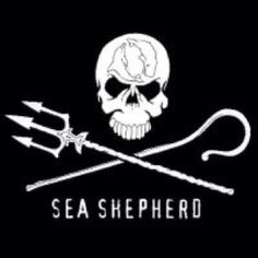 I want to be apart of the sea Shepard! What they do is amazing and I want to help! SAVE THE WHALES & SEA LIFE.