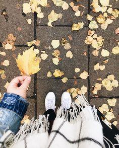 autumn to admire. • Auf ninosy.com gibt's heute den ersten Beitrag zur neuen Kategorie Flashback Friday. Weil ich Rückblicke und Persönliches auf anderen Blogs mehr feiere als alles andere. Wer also Lust auf meine Ups & Downs aus dem Oktober hat, schnappt sich ein schmackhaftes Heißgetränk und klickt mal auf den Blog.  #autumn #leaves #fromwhereistand #DHPherbst #vscocam #vsco