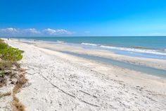Make sure the family tries these top 5 Sanibel water activities. You'll find tips for rentals, tours, shelling and beaches. Your island adventure awaits. #travel #itrip #vacationrental