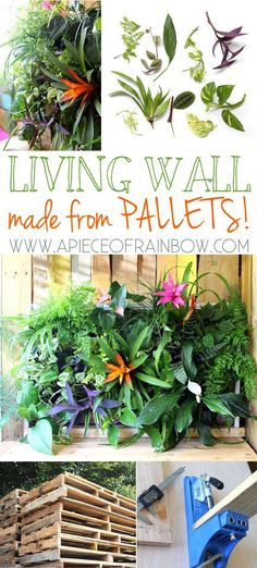 DIY Tropical Pallet Living Wall : Great pallet project that anyone can build it in less than 1 hour. Easy to maintain, and beautiful.-  via A Piece Of Rainbow