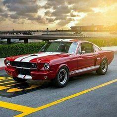 @muzzy289 ・・・ 1965 Shelby GT350 Fastback