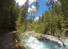 Il y a quelques jours, je vous avez laissés à Jasper où je venais d'arriver après un périple de 3 jours en train. A peine installée à mon… Jasper Alberta, Alberta Canada, Venus, Parc National, Train, River, Outdoor, Canadian Rockies, Outdoors