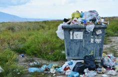 Littering and Improper Garbage Disposal Effects