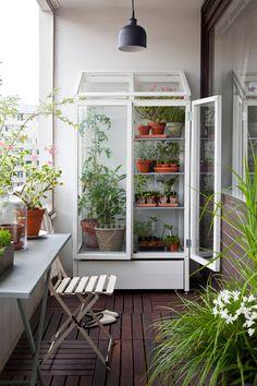 växthus för balkong odlingsbänk drivhus