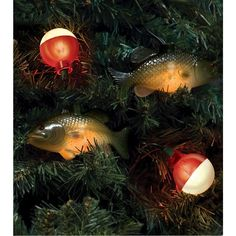1000 images about christmas tree on pinterest fishing for Fish string lights