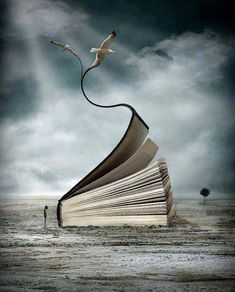 """Might this illustration be for Jonathan Seagull? I Love Books, Books To Read, My Books, World Of Books, Book Images, Fantasy, Surreal Art, Photo Manipulation, Book Lovers"