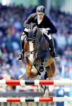 14-22-d3630b-Marcus-Ehning-GER-Plot-Blue-kwpn Beautiful Horses, Animals Beautiful, Jumping Horses, Horse Wallpaper, Cute Ponies, Hunter Jumper, Show Jumping, Horse Pictures, Horse Photography