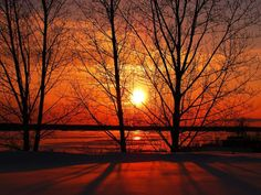 How to make painting of beautiful Sunset Beautiful Sunset, Life Is Beautiful, Beautiful Scenery, Beautiful Places, Pictures To Paint, Cool Pictures, Beautiful Pictures, Winter Sunset, Winter Trees