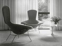 Bird chair. Focus sur le designer Harry Bertoia, le créateur de la célèbre Diamond Chair.